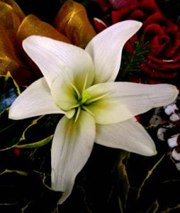 A Lilly within a bouquet of flowers
