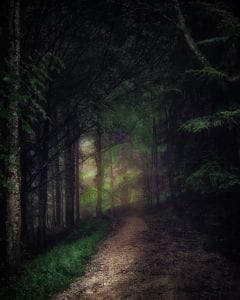 dark path in a forest with a little light at the end of it
