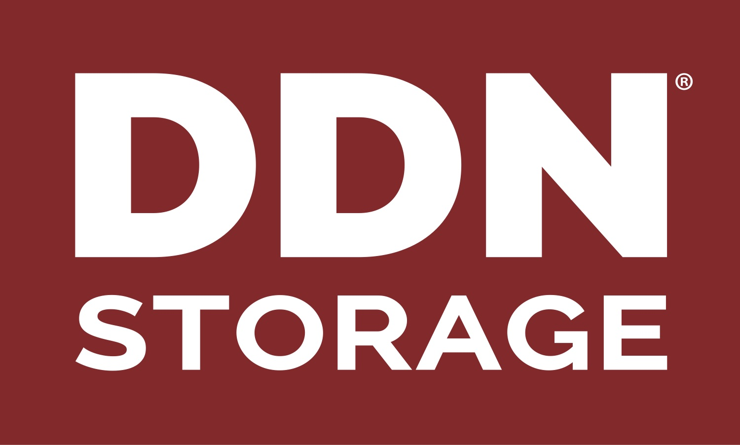 Go to DDN Storage