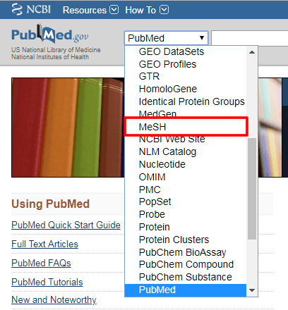 """Screenshot of the PubMed search bar's drop-down menu with """"MeSH"""" boxed in red."""