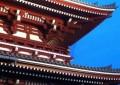 2014_Chiba, Lisa_Japan Temple