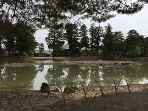 Oizumi ga Ike Pond: Stones were carried from the sea to create the rock garden surrounding the pond. - Rony Ballouz