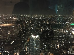 A view from the Sky Circus at the 60th floor of the Sunshine City Mall. Tokyo amazes me. Those lights just go on forever… - Daniel Gilmore