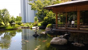 Sysmex tea house tucked away with its own koi pond. ~ Benjamin Kaiser