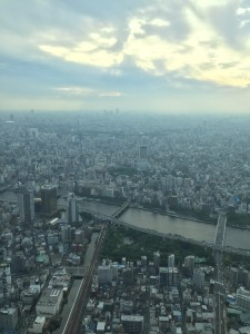 The incredible view from Tokyo Skytree showing just truly vast and dense Tokyo is. - Haihao Liu