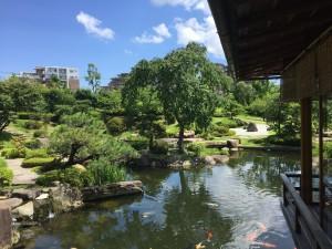 Zen of Life: Breathtakingly beautiful Japanese garden in the Sysmex Techno Park. ~ Haihao Liu