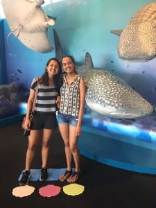 Kaiyukan Aquarium, Osaka: Enjoyed my sister's last day in Japan by going to one of the largest aquariums in the world, followed by a ride on the Tempozan Ferris Wheel. ~ Shweta Modi