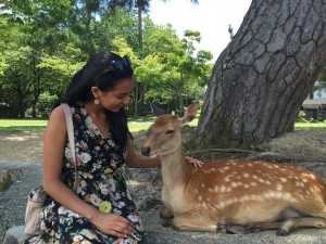 Nara Park: Spent the morning feeding the deer roaming around the park. ~ Shweta Modi