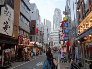 In the inner neighbourhoods of Shinjuku. - Donald Swen