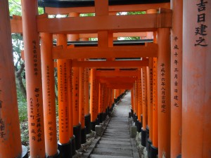 The Fushimi-Inari shrine with cascading gates that never cease to end. ~ Donald Swen