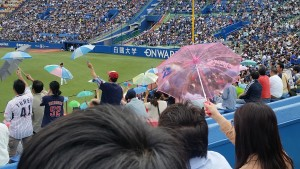Take Me Out to the Ball Game: During our last weekend in Tokyo most of us went to a Japanese baseball game! Every time the Swallows scored, their fans would wave their tiny umbrellas in the air. Even though the Swallows lost (we were sitting with their fans so I guess we were rooting for them), I had a great time watching the game.