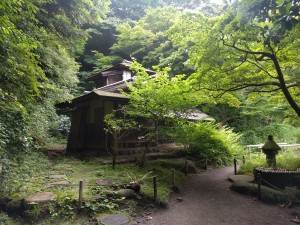 Sankeien Garden, Yokohama: Besides being gorgeous in general, it looked like a scene right out of a Studio Ghibli movie.