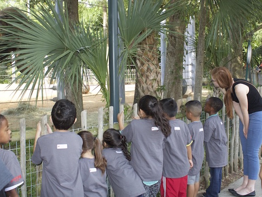 A Vocabulary-Building Trip to the Zoo