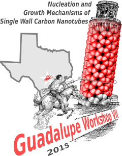 Workshop on Nucleation and Growth Mechanisms of Single Wall Carbon Nanotubes