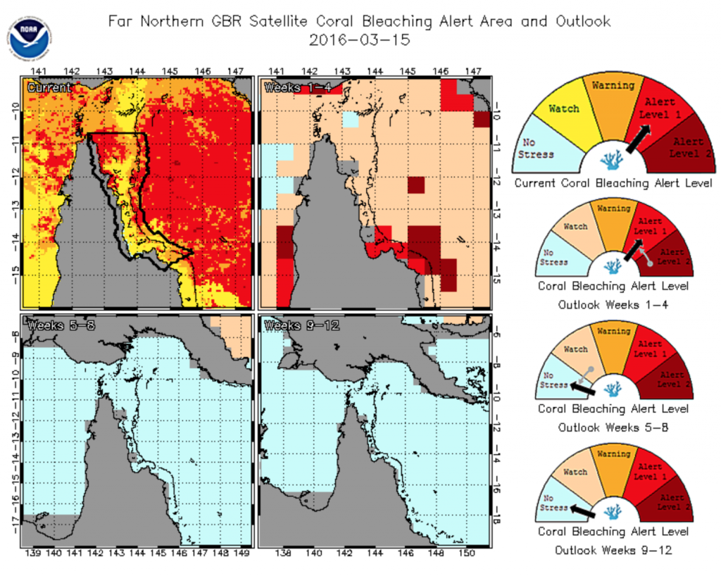 Maps and gauges representing the severity of coral bleaching in Far Northern GBR. The Maps represent the current conditions (upper left), and projections for 1-4 weeks (upper right), 5-8 weeks (bottom left), and 9-12 weeks (bottom right) out.