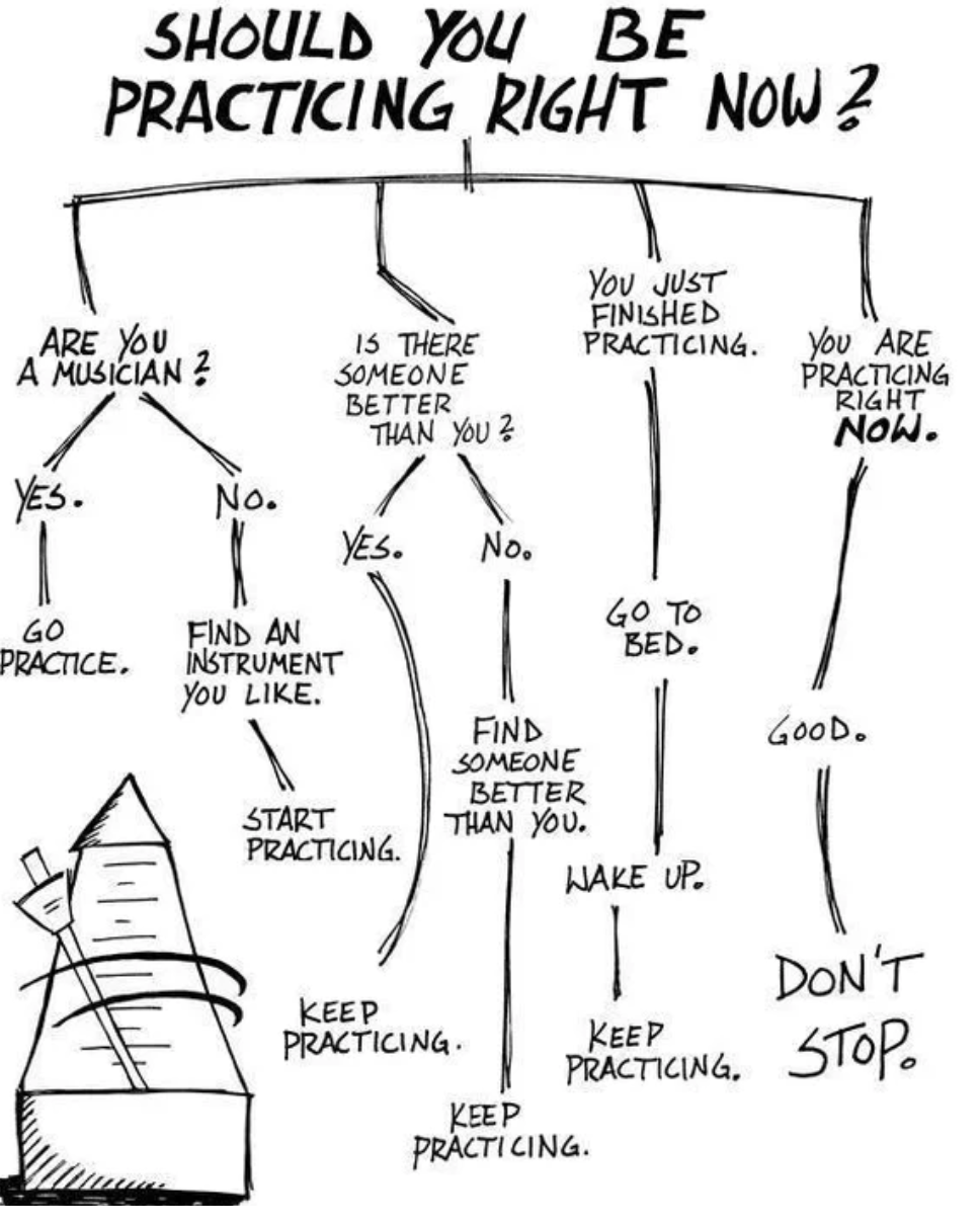 Should I be practicing right now? Flow chart.