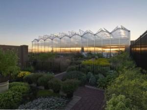 JJC greenhouse (photo: Steinkamp Photography /  Legat Architects)