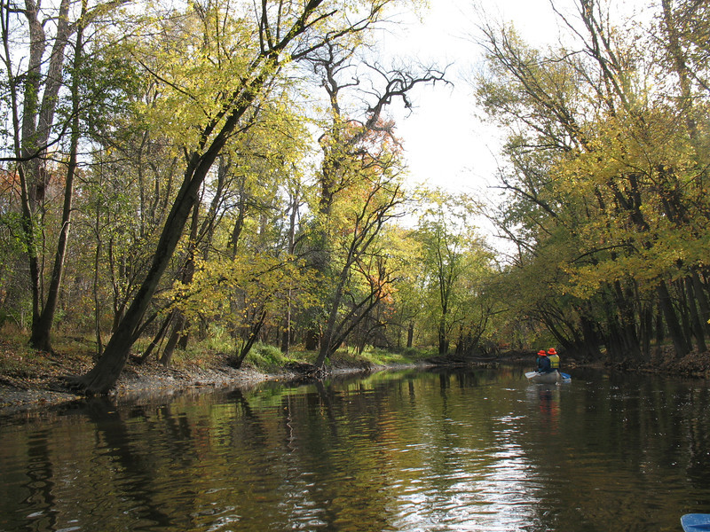 Heading downstream on the Upper North Branch, about a half-mile from our destination in the Linné Woods forest preserve in Morton Grove, IL (M. Bryson)