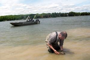 Daniel Molloy working in Sleepy Hollow Lake, Athens NY (photo: L. Mann/APO)