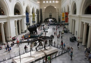 Field Museum of Natural History, Chicago IL
