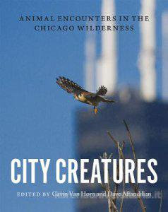 City Creatures book cover
