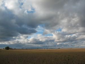 The central IL landscape: Daniel farm, Woodford County, fall 2013 (L. Bryson)