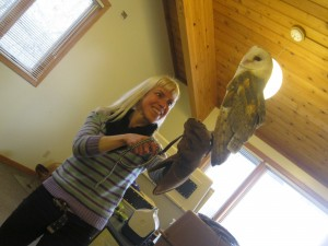 With Banshee the barn owl, a species endangered in IL due to habitat loss.