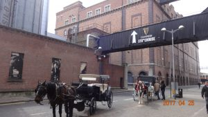 Guinness Brewery St. Jame's Gate_Ziliak 2017