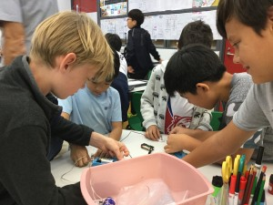 5C Teaching Grade 1C Buddies Electrical Sciences