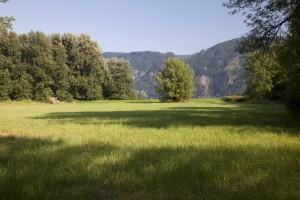 "John Yeon's ""Shire"" in the Columbia River Gorge Scenic Area"