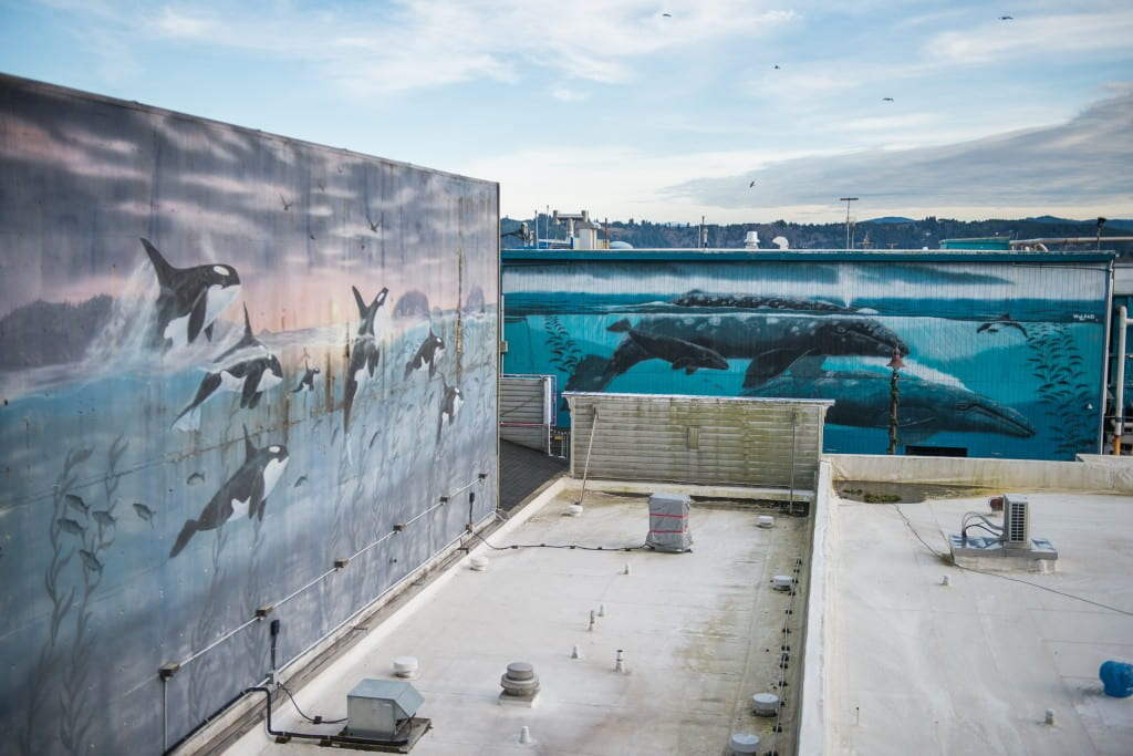 Newport's Bayfront murals are among the many pieces of public art being inventoried over the coming months as part of the Oregon Coast Public Art Trail project