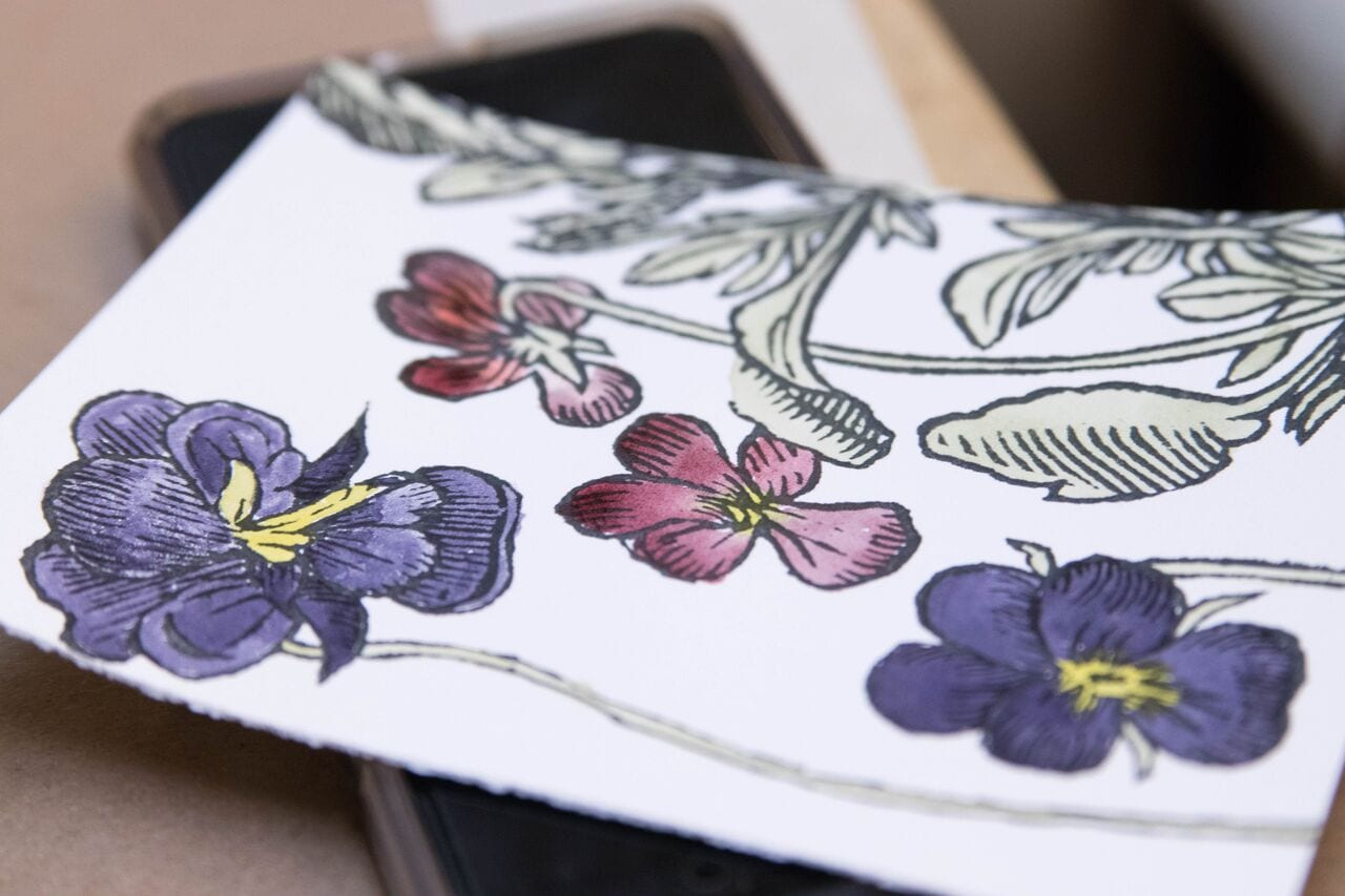UO Libraries, Tayler Bicandi. Coloring images of the flowers used for the ink taken from herbals in UO's collection