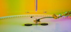 Rheometer from Corwin lab