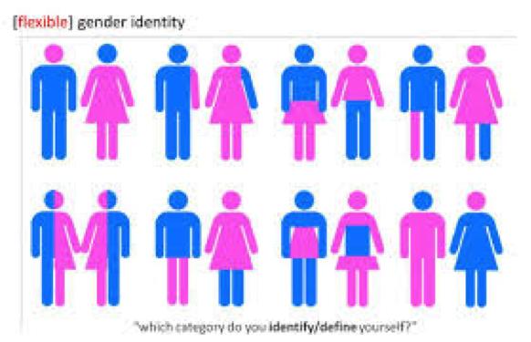 Essay on Gender Roles in Media