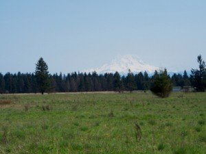 Upper Weir Prairie and Mt Rainier 30Apr15 Roy