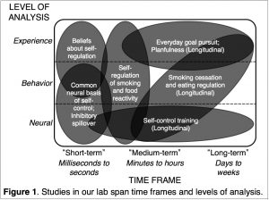 Studies in our lab span time frames and levels of analysis.