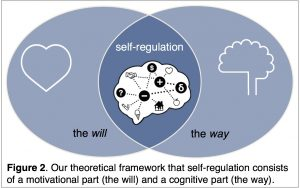 Our theoretical framework that self-regulation consists of a motivational part (the will) and a cognitive part (the way).