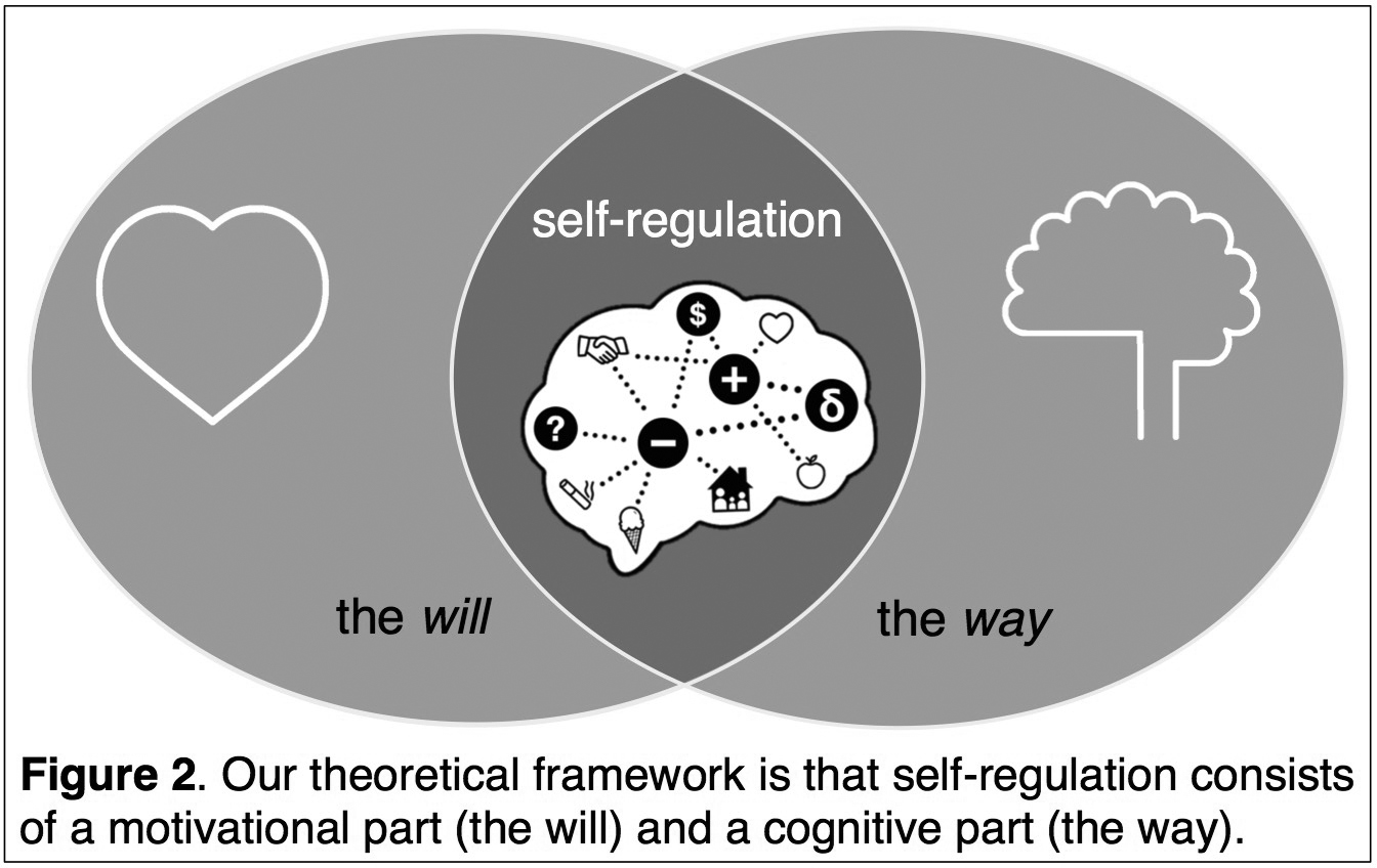 regulatory and conceptual framework The conceptual framework is intended to help drive forward a cohesive research agenda on regulatory chill that can underpin the ongoing investment treaty reform policy implications threats of international investment arbitration by powerful companies can be effective in guiding a state's regulatory behaviour.