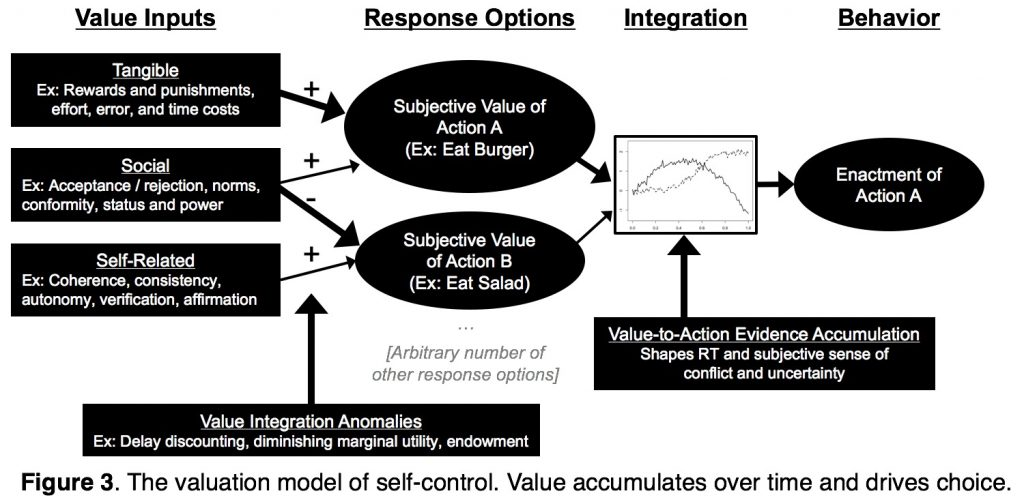 The valuation model of self-control. Value accumulates over time and drives choice.