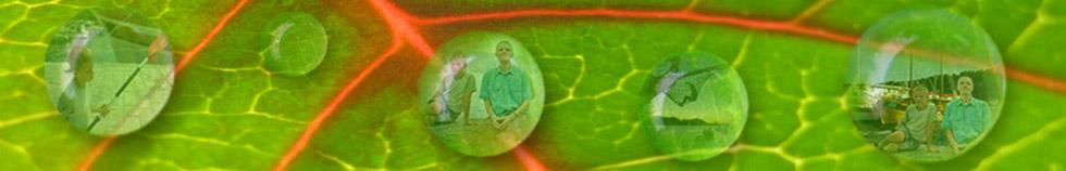 Banner-web-Dasa-finalni3