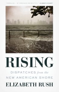 Rising book cover