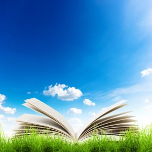 Open book in a field.