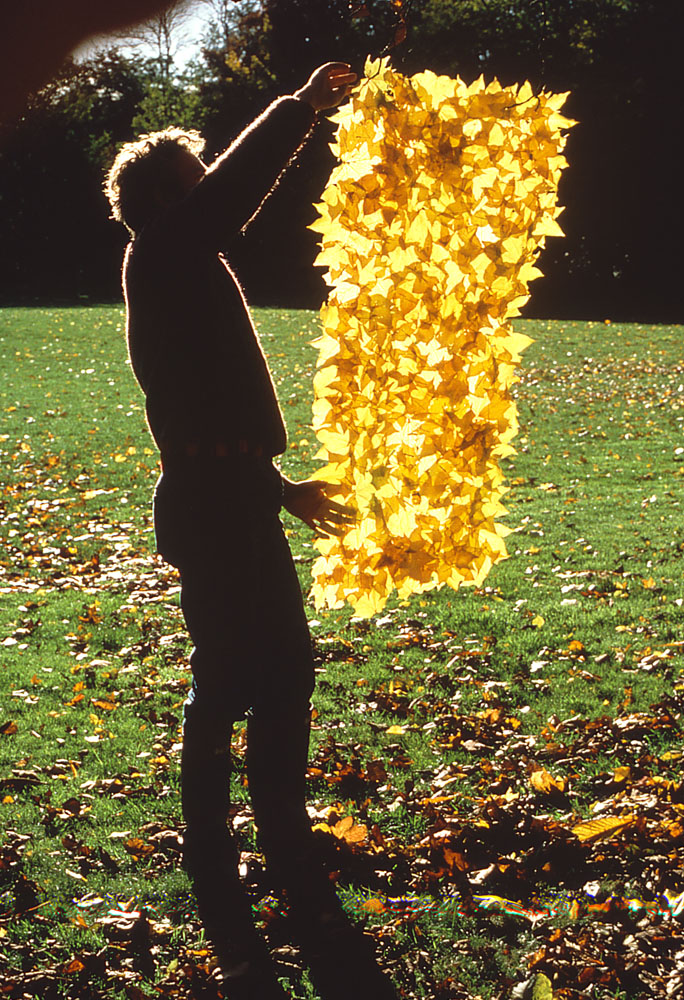 Featured artist andy goldsworthy the art of nature for Artiste nature