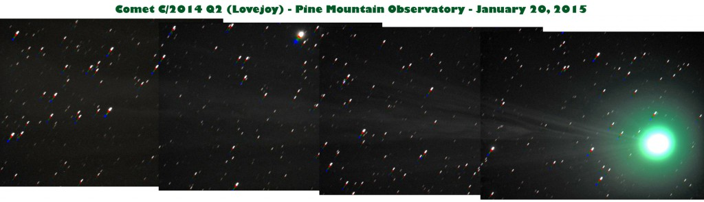 Photo of Comet Lovejoy (with tail) taken at PMO.