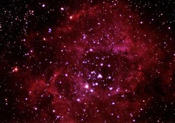 Rosette Nebula photographed by PMO volunteer Jim Wakefield.