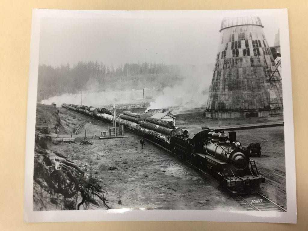 Train carrying felled trees