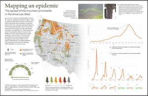 Mapping an Epidemic: The spread of the mountain pine beetle in the American West