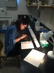 brynn in the lab