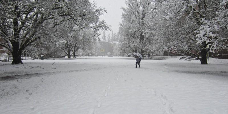 Snowstorm March, 2012 Quad