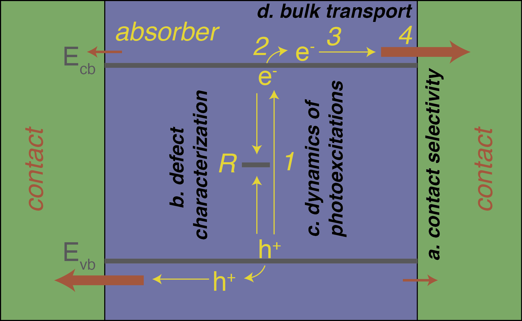 Basic processes in a photovoltaic.